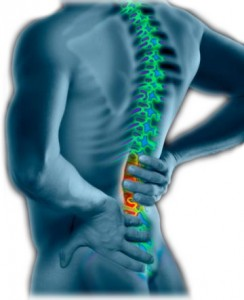 Arthritis in Back Symptoms